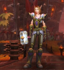 World of Warcraft Paladin Class