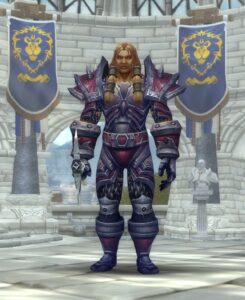 World of Warcraft Warrior Class