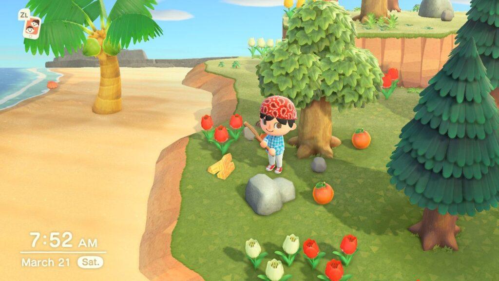 Animal Crossing New Horizons Mining Rock